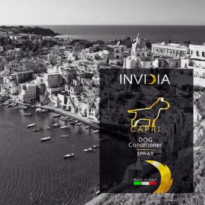 INVIDIA Italia: Capri - Shampoo per cani