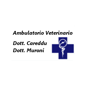 Ambulatorio Veterinario Careddu - Muroni